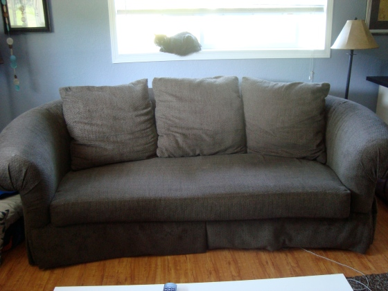 The old couch - FOR SALE IF YOU WANT IT!