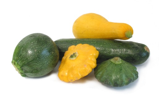 summersquash-group