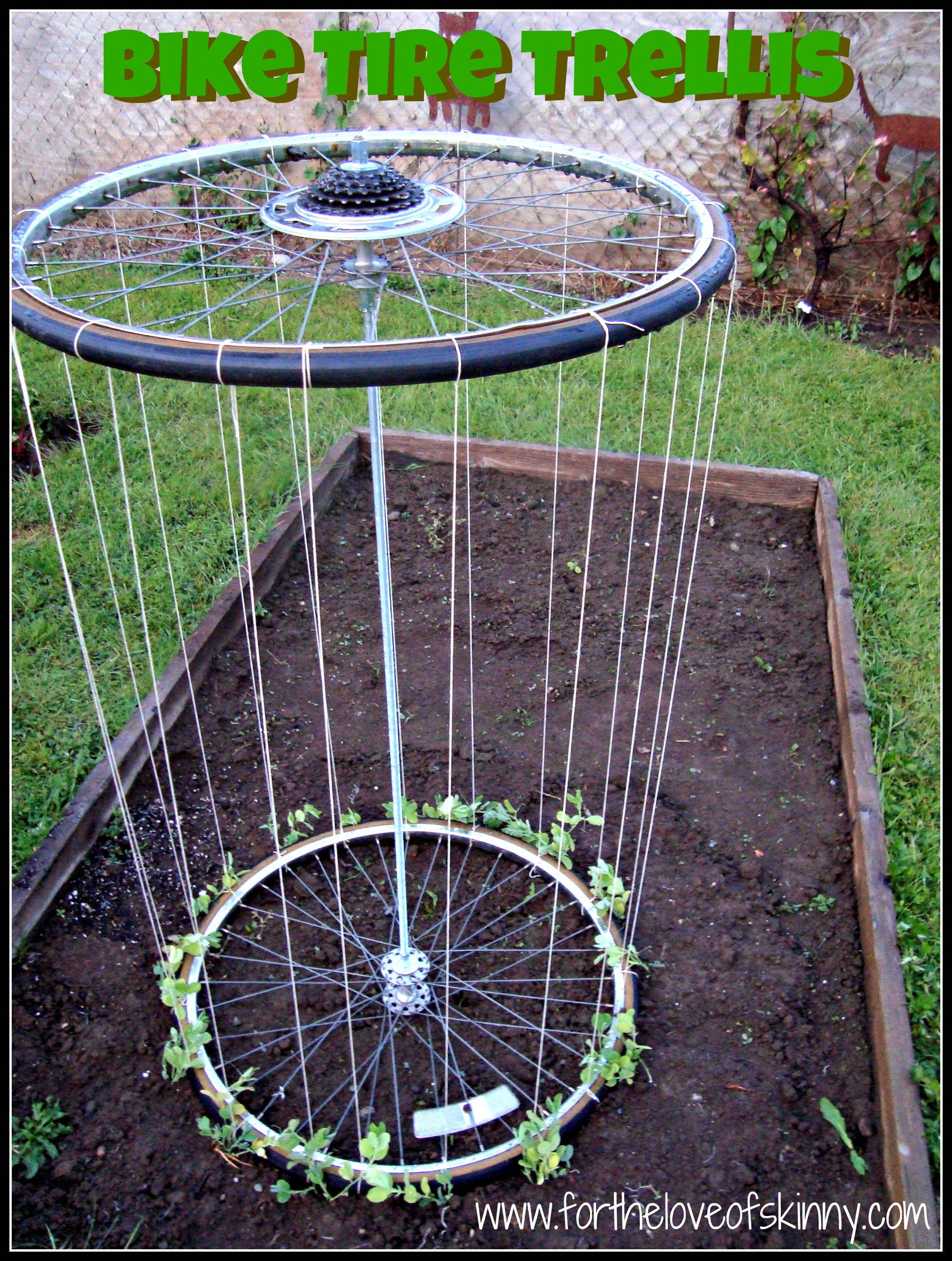 Recycled tire trellis the family chapters for Diy tire