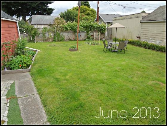 yard june 2013